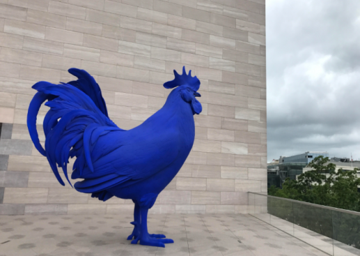 Blue Rooster1